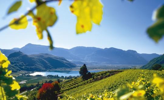 Culinaire tips voor een foodcation in Zuid-Tirol