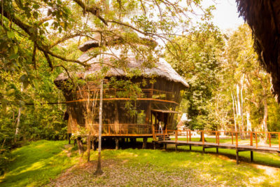 Treehouse Lodge - Glampingguide.fr